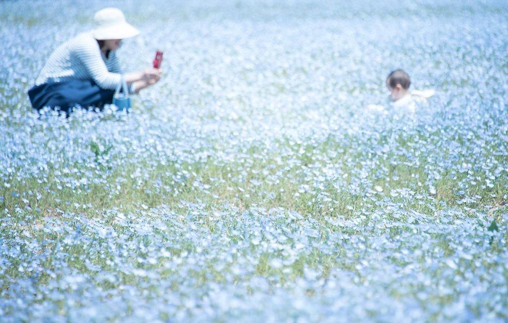 Photography by Tomoe Kobayashi